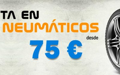 Neumáticos Continental desde 75 €